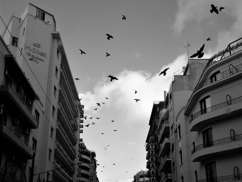 city tales